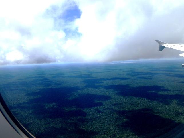 Amazonie, colombie, amérique du sud, amérique latine,