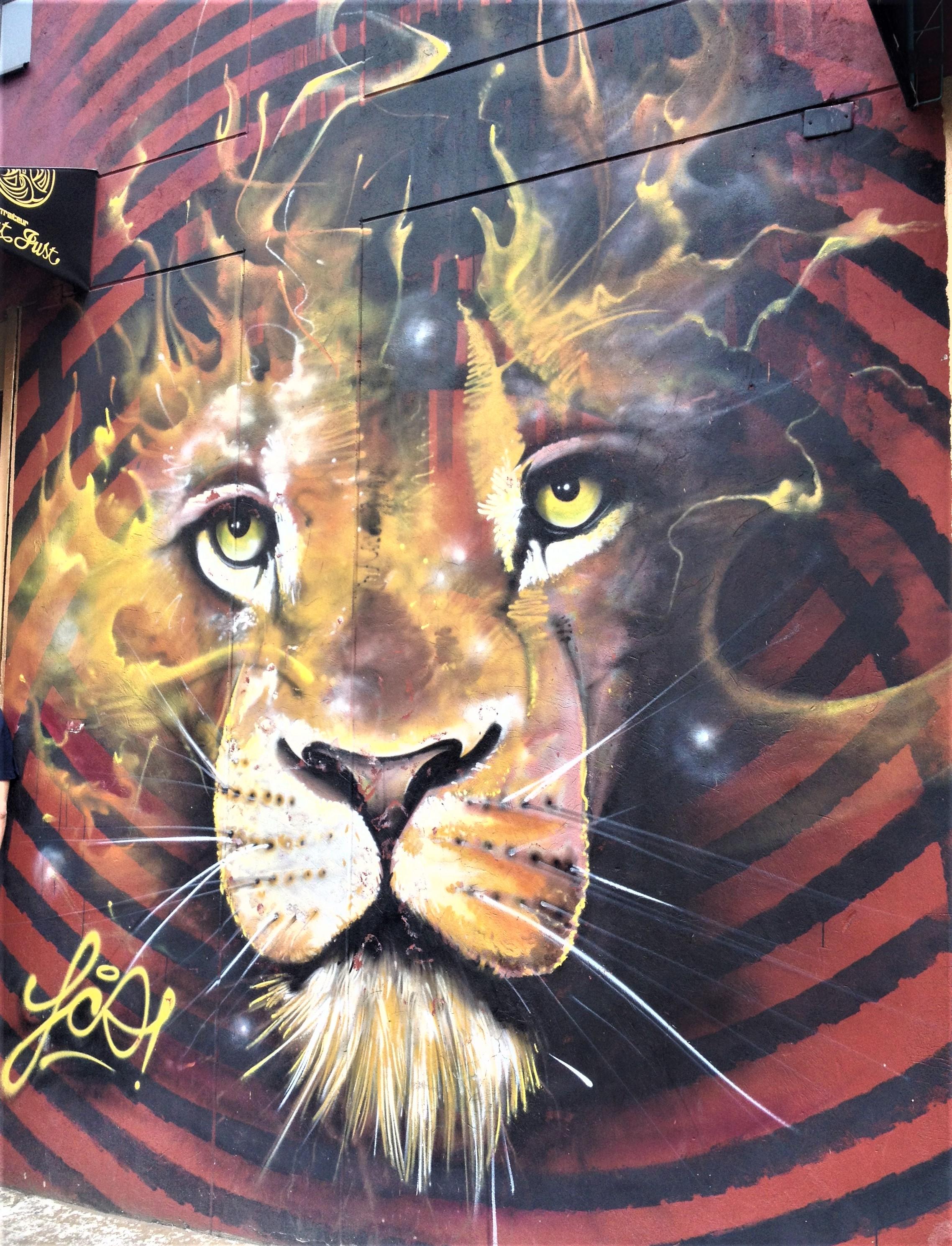 bogota colombie street art graffiti