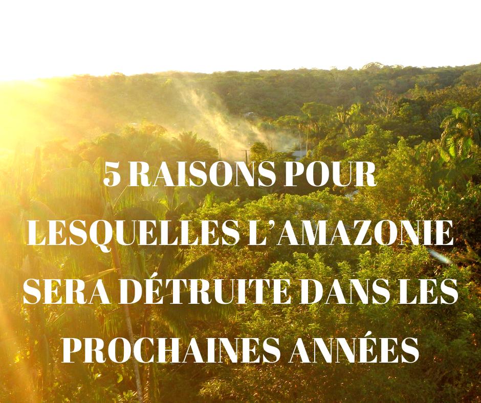 5 raisons pour lesquelles l'Amazonie sera détruite dans les prochaines années