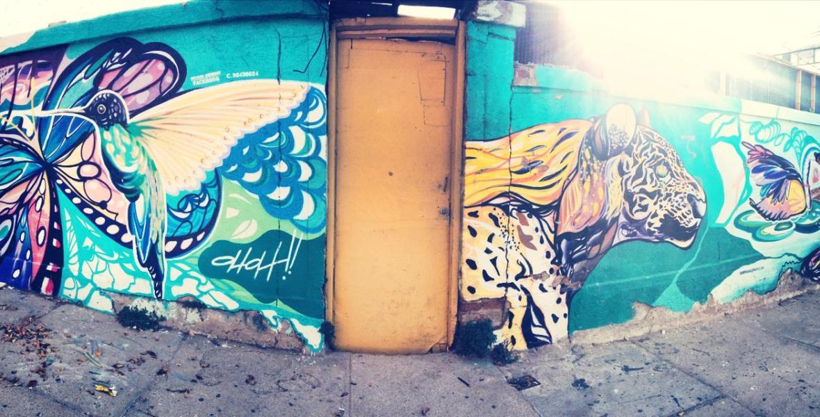 graffiti valparaiso street art chili