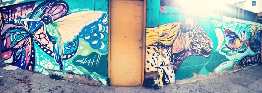 graffiti valparaiso street art chili