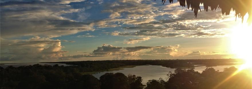 amazonie amérique du sud
