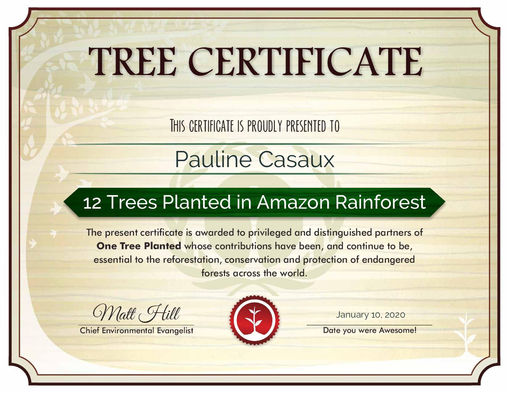 certificat reforestation amazonie planter arbres pérou