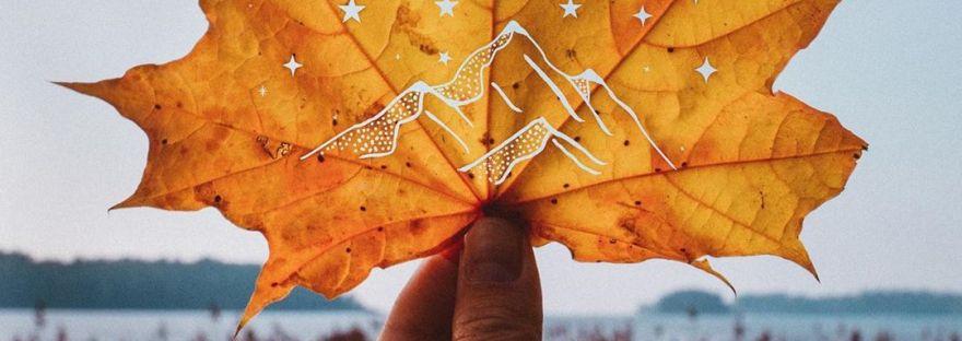 automne saison mort lâcher prise